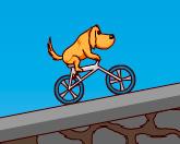 Вело соревнования