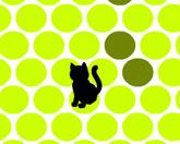 Загони кота