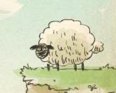 Дом овечки
