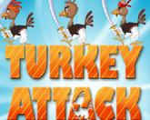 Атака индеек