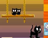 коты на качели