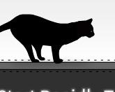 Прыжок кота