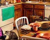Приборка на кухне