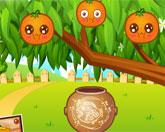 апельсиновый урожай