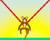 Космическая обезьянка