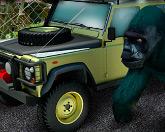 Парковка в зоопарке
