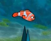 Подводные гонки рыб