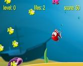 Рыбье сумасшествие