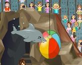 Шоу с дельфином 2