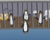 Пингвины в бегах