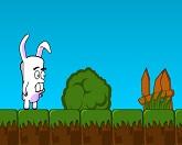 Странный кролик