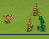 Кабаньи бега