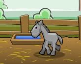 Лошадиное ранчо