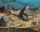 Разнообразь риф