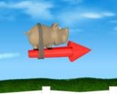 Свинья на ракете