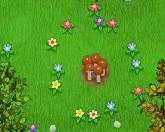 Сумасшествие грибов