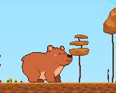 Медвежьи сокровища