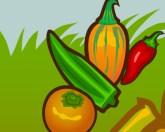 Овощная катапульта