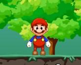Марио и бомба