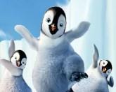 Пингвины зажигают