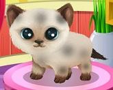 Животная красота 3: щенята и котята