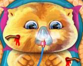 Джинджер в травматологии