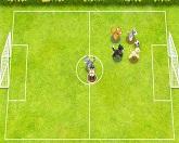 Футбол Домашних Питомцев