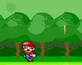 Супер Марио ловец монет