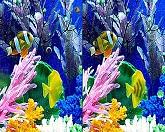 Найти отличия - морские элементы