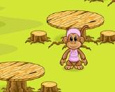 Завтрак обезьян