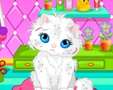 Мытье кошки