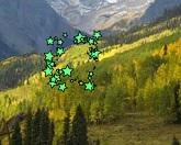 Зеленые равнины - поиск номеров