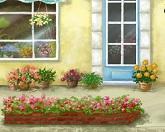 Цветы – язык любви