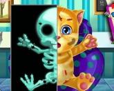 Джинджер на рентгене