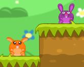 Страна кроликов