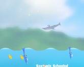 Дельфинья олимпиада