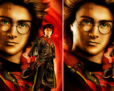 Гарри Поттер - отличия