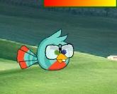 Птица в очках