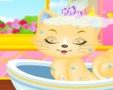 Помой кошку 2