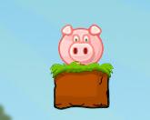 Спасение свинки