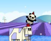 Стрелок пандами