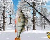 Реальная рыбалка