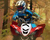 Квадроциклы по лесу