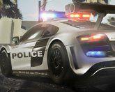Полиция в тропиках