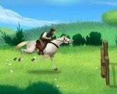 Поездка на лошади